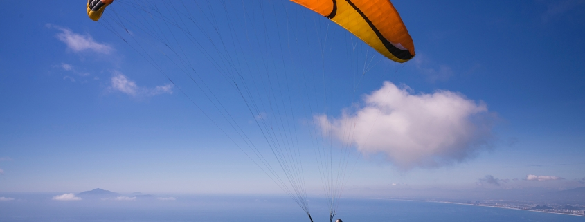 Skydiving Parachuters - when is the right time to pull your parachute for your business exit strategy.
